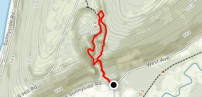 Clarks Gully from Sunnyside Road Map