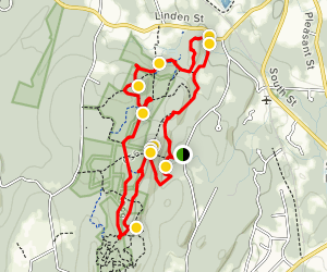 Tyler, Berlin RoadTrail, North Gorge and South Overlook Loop Map
