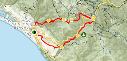 Dipsea, Steep Ravine, and Matt Davis Loop Map
