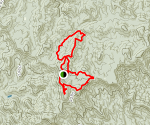 Springer Mountain Triple Loop Trail Map