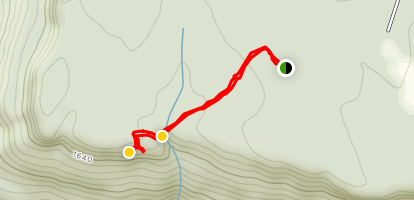 Denny Cove Overlook Trail Map