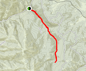 South Fork Inman Trail Map