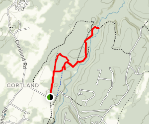 Beall Loop and Blackwater View Trail Map