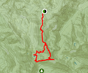 Bull of the Woods, Mother Lodge, Pansy Lake, Dickey Lake Trail Loop Map