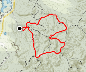 Whitford Forest MTB Trails Map