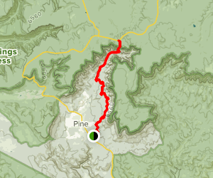 Pine Canyon Trail Map