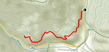 Forest Road Trail Map