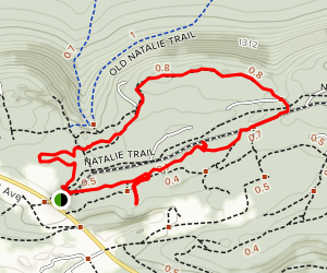 40s Trail and Maggie's Pond Map