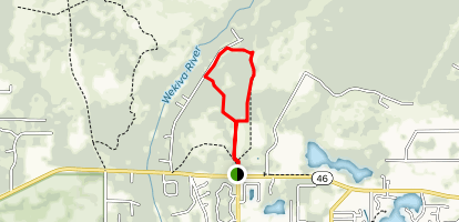 Lower Wekiva Preserve Blue Trail Loop from State Road 46 Map
