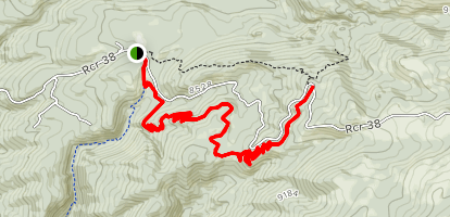 Flash of Gold Trail Map