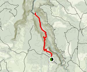 Collins Gulf Trail to Horsepound Falls and Collins River Map