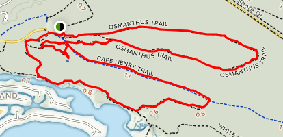 Osmanthus Trail, Bald Cypress, High Dune, Cape Henry, Long Creek, Fox Trail Map