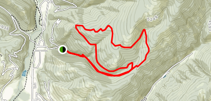 Woods Gulch and Three Larches Trails Loop Map