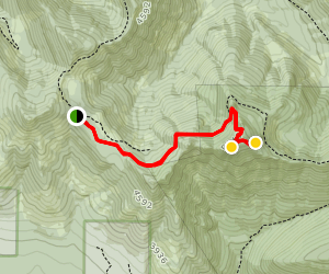 Triangulation Peak and Boca Cave Trail Map