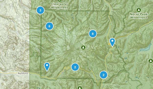 Mount Rainier National Park Camping Map