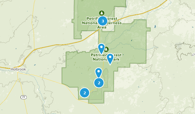 Petrified Forest National Park Kid Friendly Map