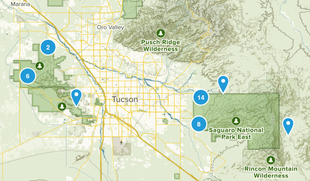 Saguaro National Park Birding Map