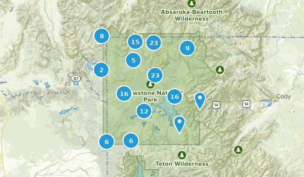 Yellowstone National Park Wild Flowers Map
