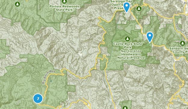 Best Waterfall Trails in Big Basin Redwoods State Park | AllTrails