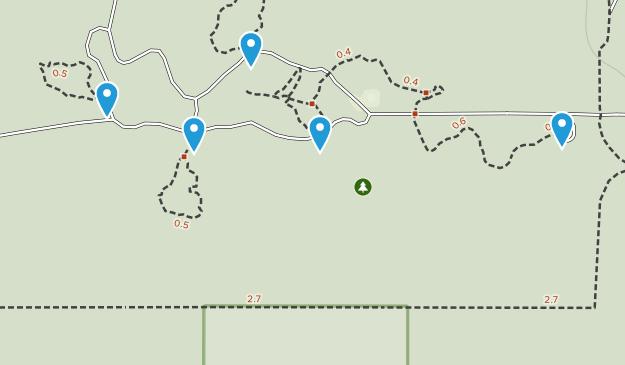 Highlands Hammock State Park Nature Trips Map