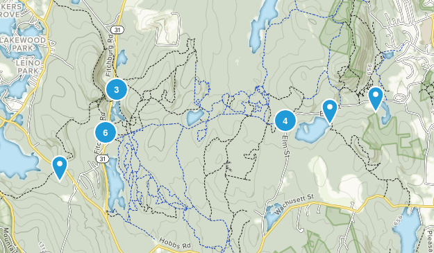 Leominster State Forest Hiking Map