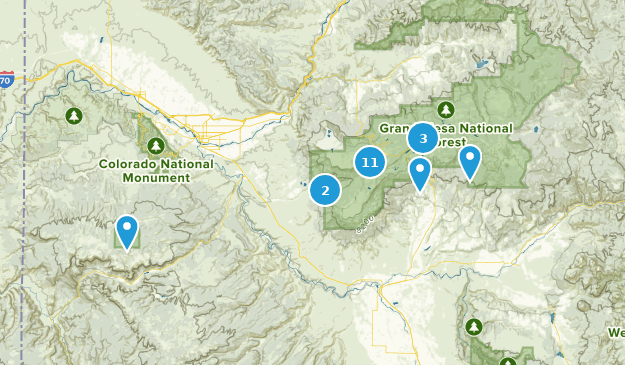 Grand Mesa National Forest Dogs On Leash Map