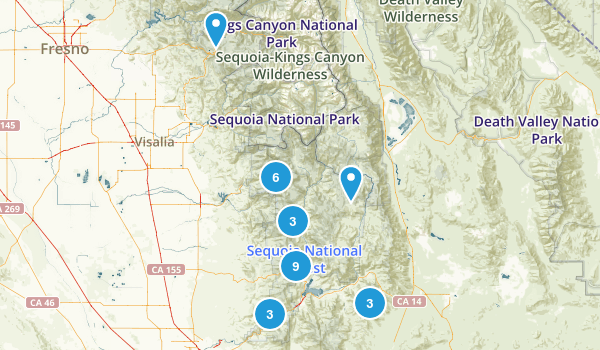 Best Places To Camp With A Dog In Sequoia