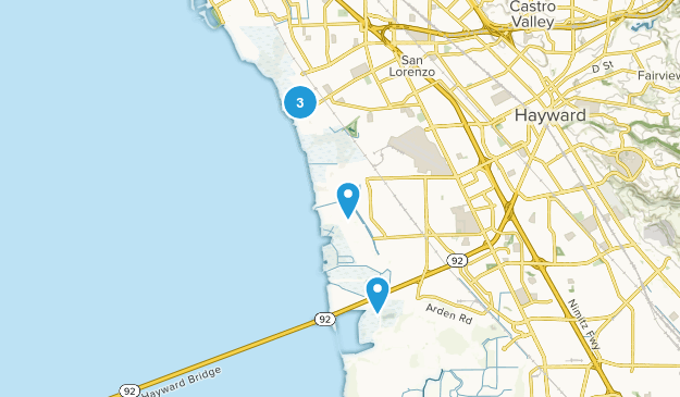 Hayward Regional Shoreline Birding Map