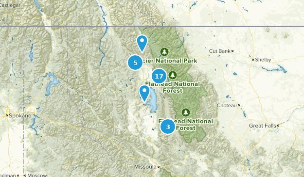 Flathead National Forest Wildlife Map