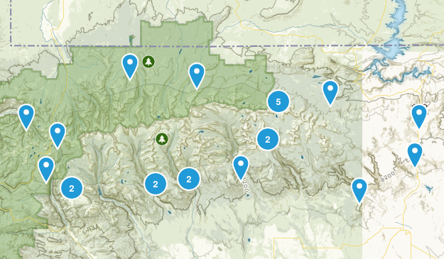 Ashley National Forest Hiking Map