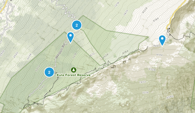 Kula Forest Reserve Hiking Map