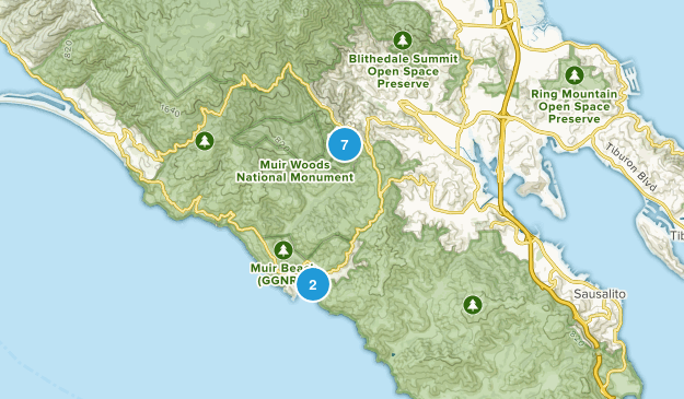 Muir Woods National Monument Wild Flowers Map