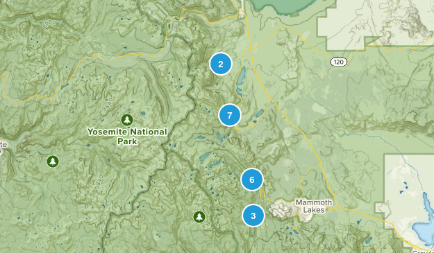Ansel Adams Wilderness Birding Map