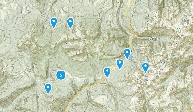 Lézard, tête, désert Hiking Map