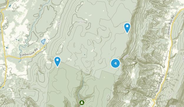Best Dog Friendly Trails in Dolly Sods Wilderness | AllTrails