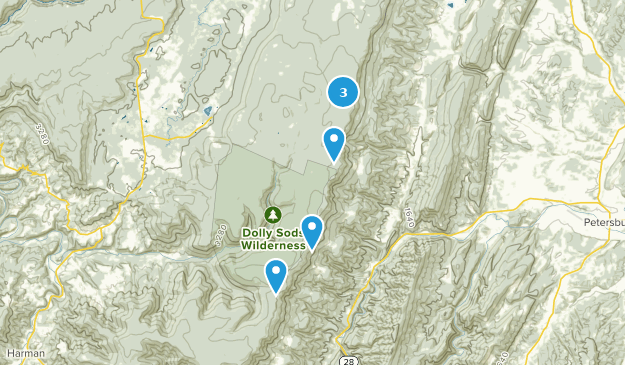 Map of Trails near Dolly Sods Wilderness - West Virginia | AllTrails