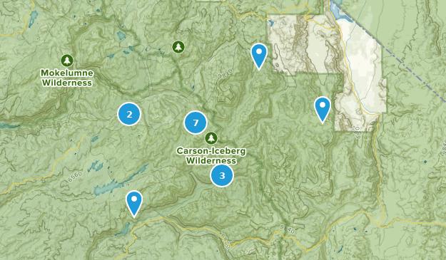 Carson-Iceberg Wilderness Hiking Map
