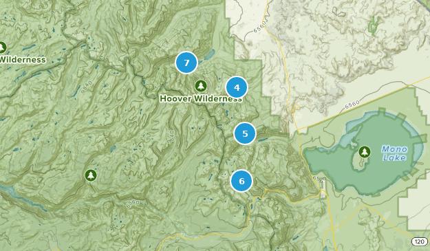Best Lake Trails in Hoover Wilderness   AllTrails
