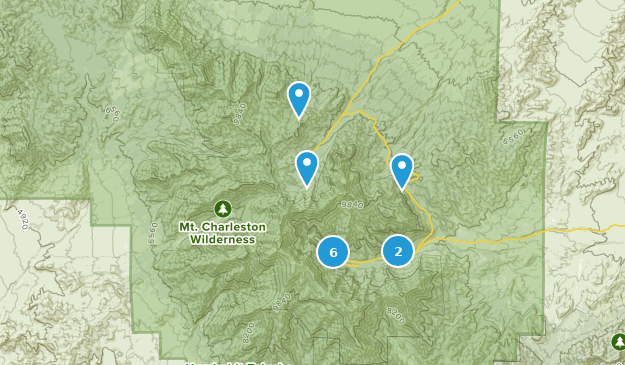 Mt. Charleston Wilderness Bird Watching Map