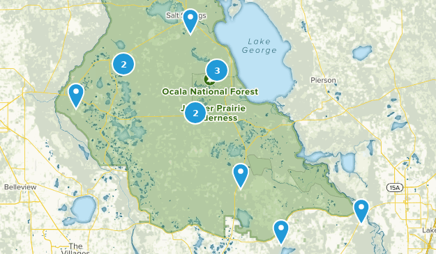 Best Wildlife Trails In Ocala National Forest Alltrails