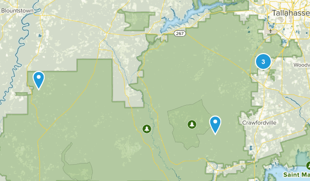 Apalachicola National Forest Hiking Map