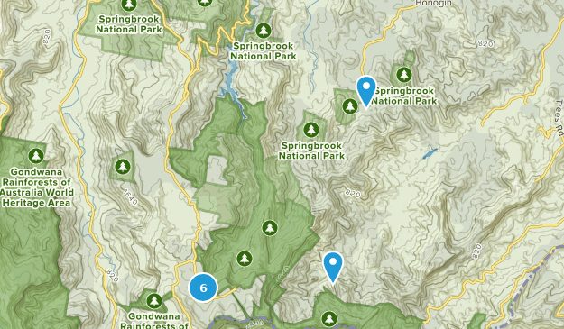 Springbrook National Park Birding Map