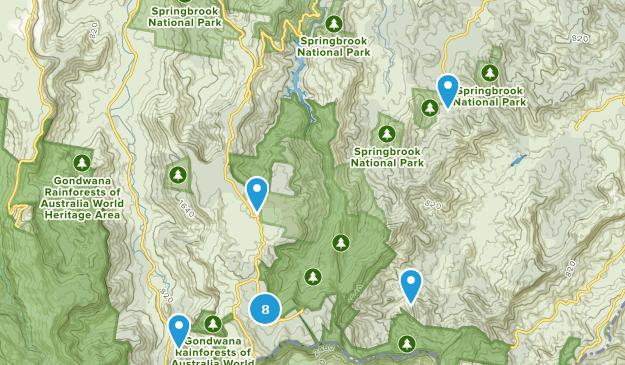Springbrook National Park Hiking Map