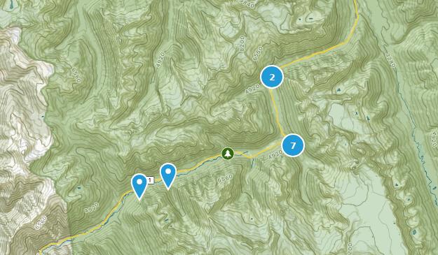 Parc national des glaciers du Canada Hiking Map
