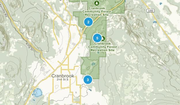 Site récréatif de la forêt communautaire de Cranbrook Mountain Biking Map