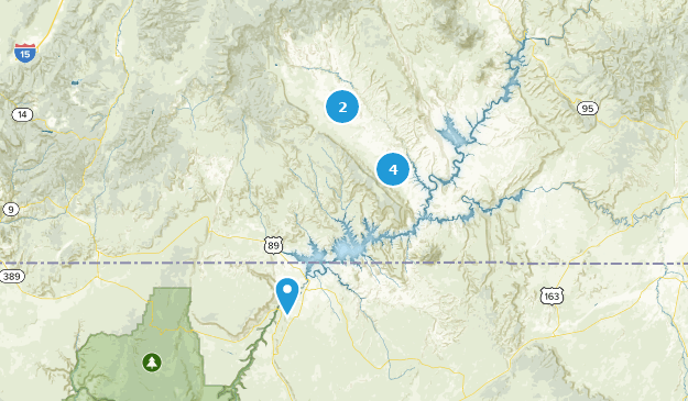 Aire de loisirs nationale de Glen Canyon Bird Watching Map