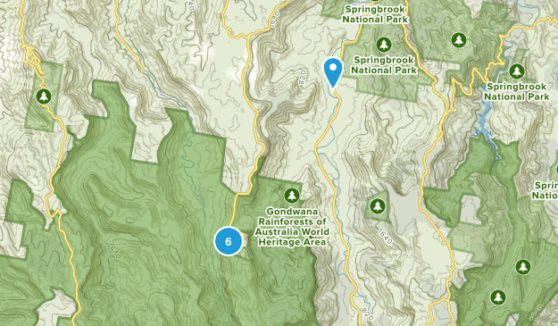 Beechmont, Queensland Forest Map