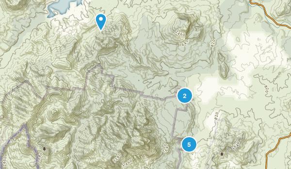 Palen Creek, Queensland Wild Flowers Map