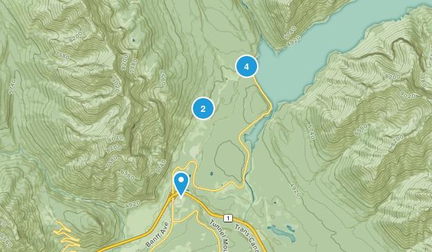 Anthracite, Alberta Birding Map