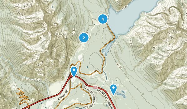 Anthracite, Alberta Walking Map